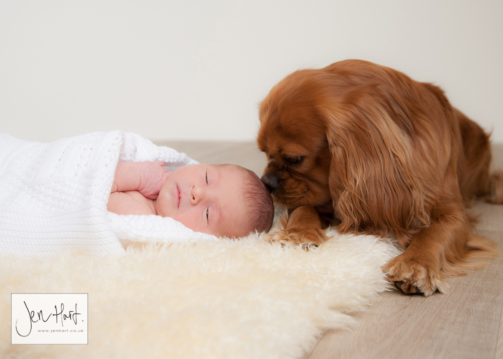 Baby_Bump_Newborn_Jen_Hart_15Jan16_032